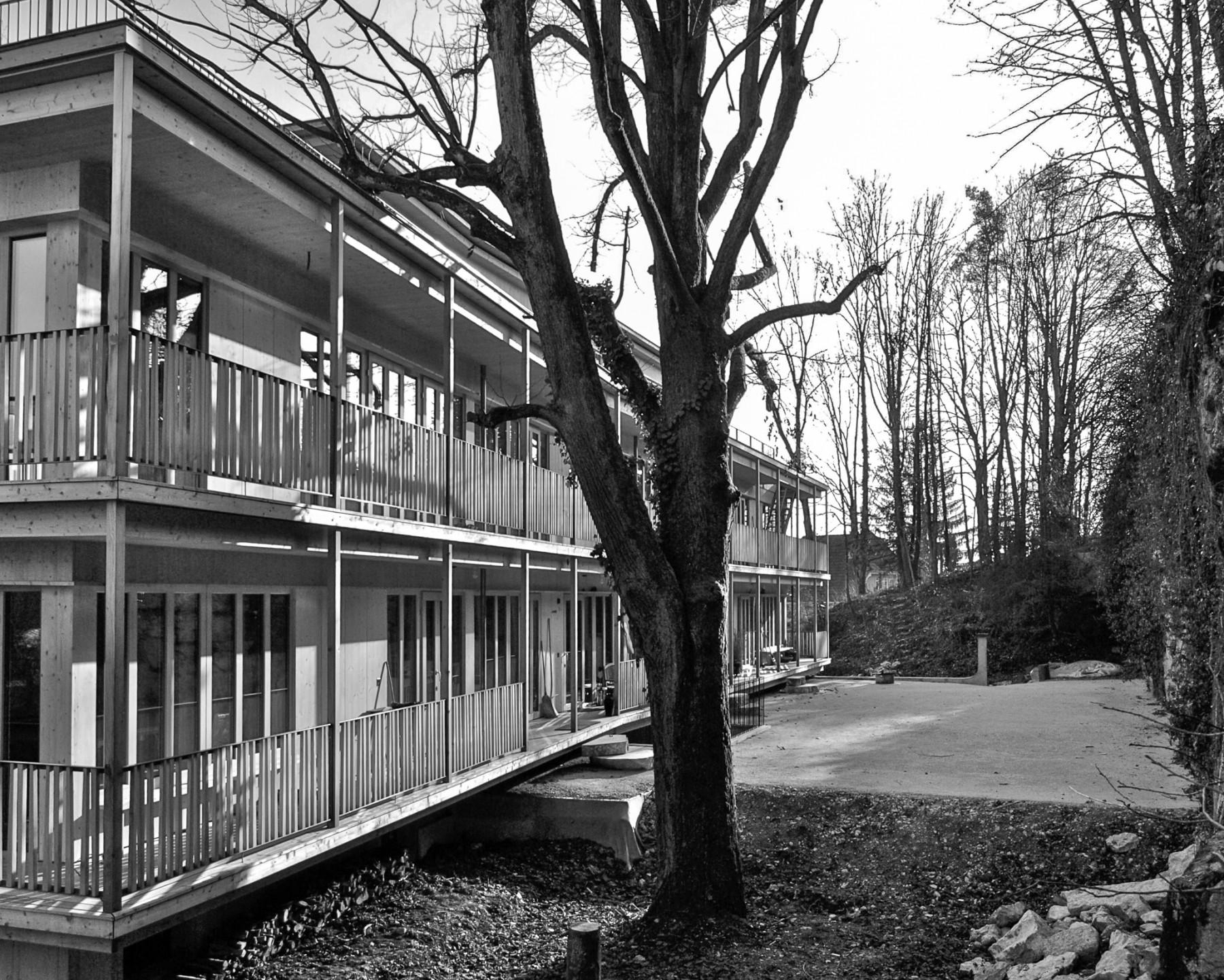 Dual · Neubau MFH Solothurn